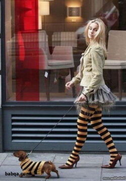 thigh high socks fashion and best of lingerie